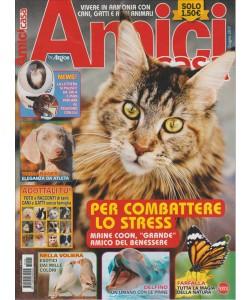 """Amici di Casa by Argos  - mensile n. 148 giugno 2017 - """"Maine Coon"""""""