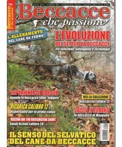 Beccacce che Passione- bim.n.4 Luglio 2017 - L'evoluzione del Setter da Beccacce