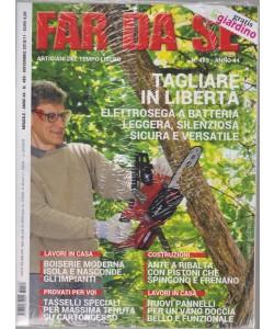 Far Da Se' + In giardino gratis - n. 489 - mensile - novembre 2018 - 2 riviste