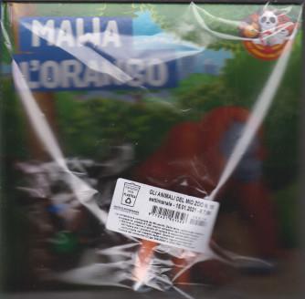 Gli animali del mio  zoo -Mawa l'orango - n. 18  - settimanale -15/1/2021 - copertina rigida