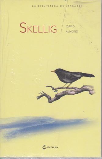 La biblioteca dei ragazzi  -Skellig - David Almond - n. 23 - settimanale 12/6/2021