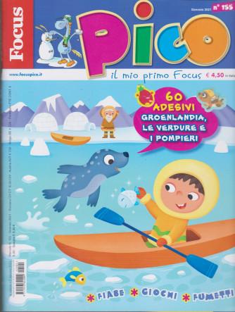 Focus Pico - n. 155 - gennaio 2021- mensile