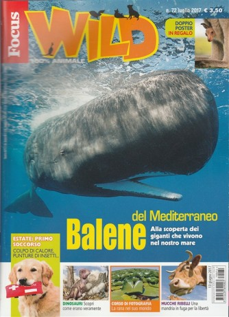"Focus Wild - mensile n. 72 Luglio 2017 ""Balene del Mediterraneo"""