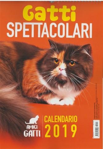 Calendario 2019 Amici Gatti - Gatti Spettacolari - cm.29x42 con spirale
