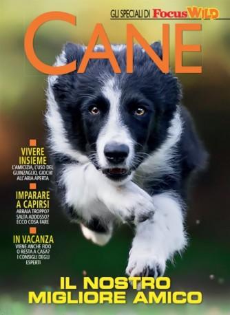 Focus Wild - Speciale sui cani - Il nostro migliore amico