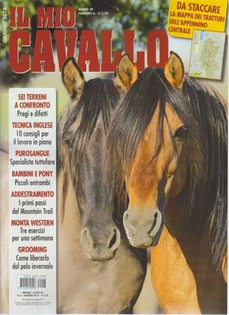 Il mio cavallo n. 6 - giugno 2018 - mensile