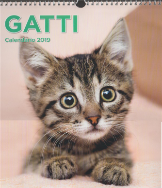 Calendario Gatti 2019 - cm. 31x 33 c/spirale