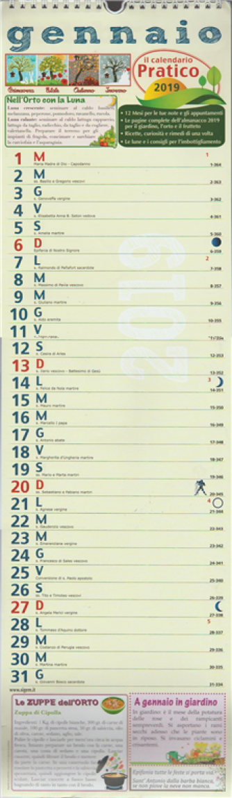 Calendario Pratico  2019 - cm. 18 x 63 con spirale
