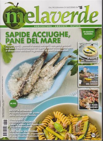 Mela Verde Magazine - n. 16 - mensile aprile 2019 -