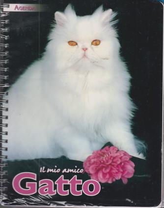 Un anno con Agenda 2021 - Il mio amico gatto - n. 21 - bimestrale - novembre 2020 - con la spirale