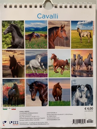 Calendario 2021 Cavalli - cm. 30.5 x 33 con spirale