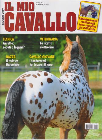 Il Mio Cavallo - n. 6 - giugno 2019 - mensile