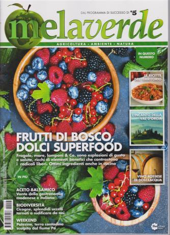 Mela Verde Magazine - n. 18 - mensile - giugno 2019 -