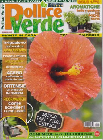 Pollice Verde - n. 116 - mensile - 24/5/2019 -