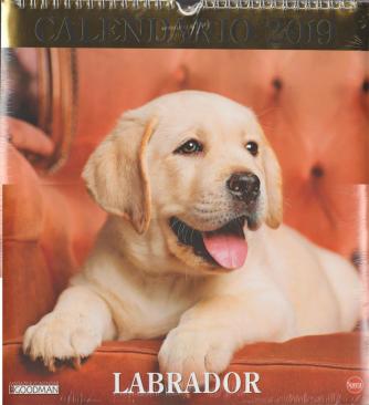 Calendario 2019 Labrador - cm. 28x30 con spirale