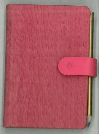 Agenda 2016 Bi-Giornaliera 6x9cm-Mod.100 PiùPiccola-Cangini Filippi rosso