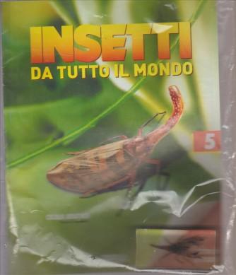 INSETTI DA TUTTO IL MONDO. N. 5 CICALA ASIATICA.