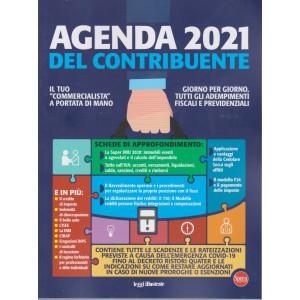 Agenda 2021 del contribuente - n. 28 - bimestrale -febbraio - marzo 2021