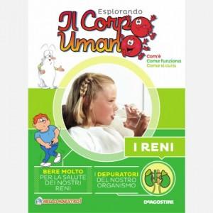 """Esplorando il Corpo Umano - 27esima edizione Fascicolo """"I Reni"""" + DVD in HD"""