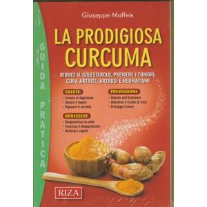 LA PRODIGIOSA CURCUMA. N. 87. AGOSTO 2016.