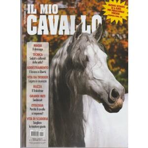 Il Mio Cavallo - Mensile n. 11 - Novembre 2016
