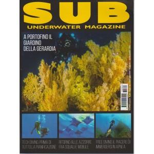 "SUB (Underwater Magazine) mensile n. 381 Giugno 217 ""Free Diving"""
