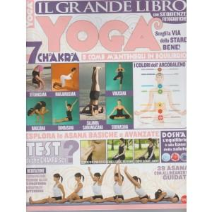 Vivere Lo Yoga Speciale - Il Grande Libro Yoga - bimestrale Luglio 2017