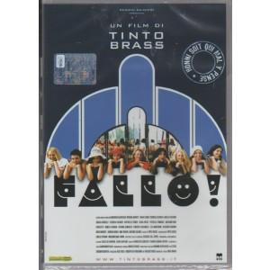 DVD - FALLO! - un film di Tinto Brass