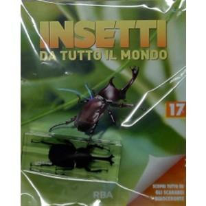 Collezione Insetti da tutto il mondo n.17  - Scarabeo rinoceronte - RBA edizioni