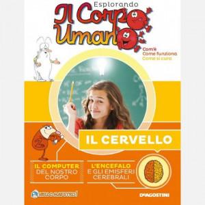 Esplorando il Corpo Umano HD (28esima edizione)  Uscita Nº 9 del 08/12/2020 Periodicità: Quindicinale Editore: DeAgostini Publishing