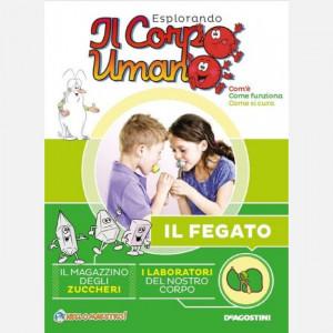 Esplorando il Corpo Umano HD (28esima edizione)  Uscita Nº 8 del 24/11/2020 Periodicità: Quindicinale Editore: DeAgostini Publishing