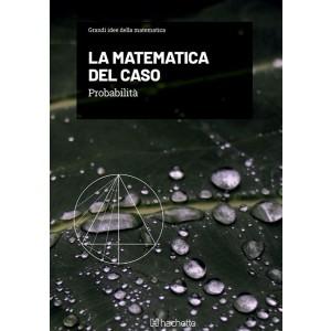 Grandi idee della matematica uscita 17