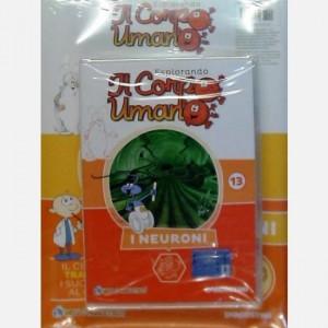"""Esplorando il Corpo Umano - 27esima edizione Fascicolo """"I Neuroni"""" + DVD in HD"""