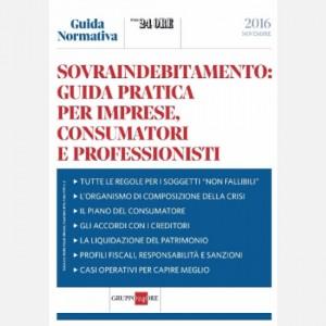 Guida Normativa Sovraindebitamento: guida pratica per imprese, consumatori e professionisti