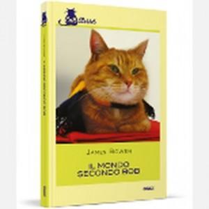 OGGI - Cats Stories Il mondo secondo Bob