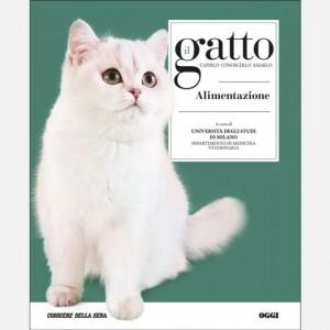 Il gatto Alimentazione