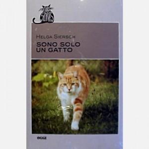 OGGI - Cats Stories Sono solo un gatto