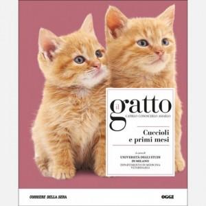 Il gatto Cuccioli e primi mesi