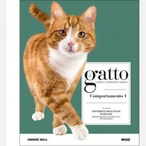 Il gatto Comportamento 1