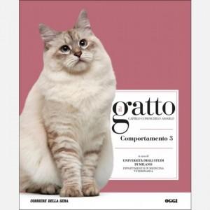 Il gatto Comportamento 3