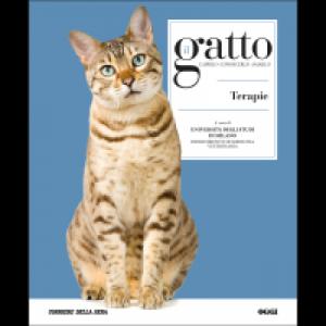 Il gatto Salute e cure 2