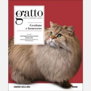 Il gatto Gestione e benessere