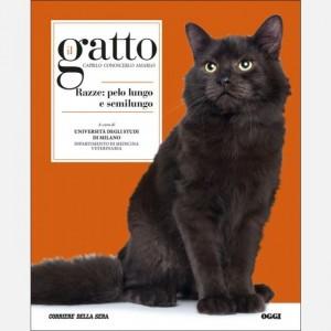Il gatto Razze: pelo lungo e semilungo