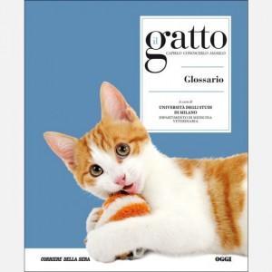 Il gatto Glossario