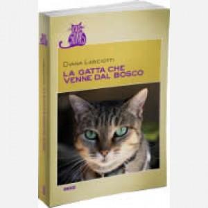 OGGI - Cats Stories La gatta che venne dal bosco