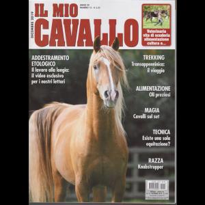 Il Mio Cavallo - n. 12 - dicembre 2019 - mensile