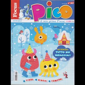 Focus Pico - n. 143 - gennaio 2020 - mensile -