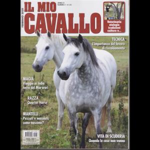 Il mio cavallo - n. 2 - febbraio 2020 - mensile