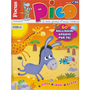 Focus Pico - n. 148 - giugno 2020 - mensile