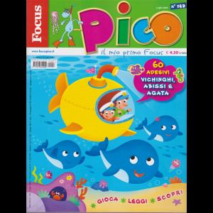Focus Pico - n. 149 - luglio 2020 - mensile